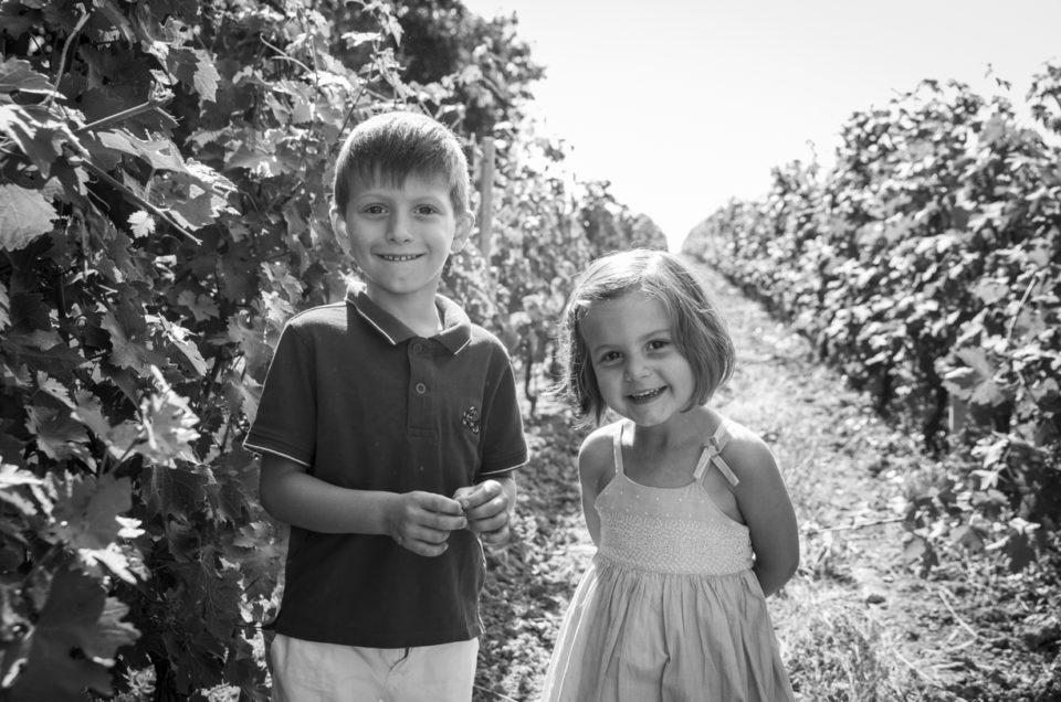 Photos de famille dans les vignes – Faye D'Anjou